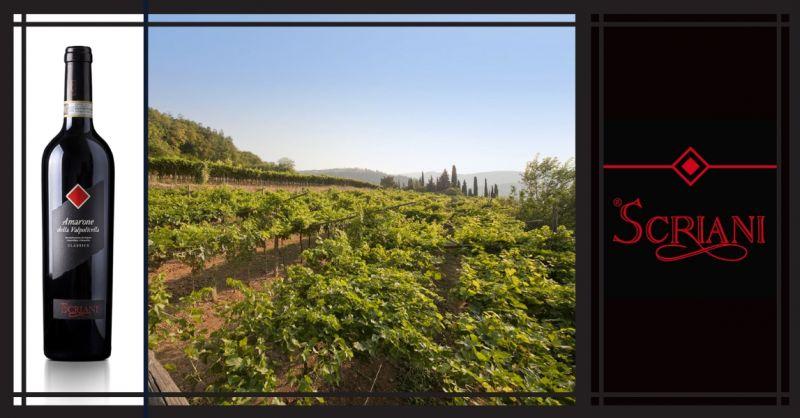 AZIENDA AGRICOLA I SCRIANI - Occasione vendita online vino Italiano Amarone della Valpolicella