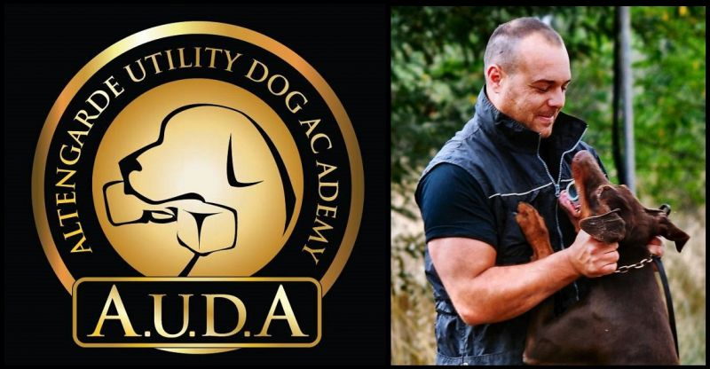 A.U.D.A - A certified breeding company Doberman pinschers and Bordeaux Dogues