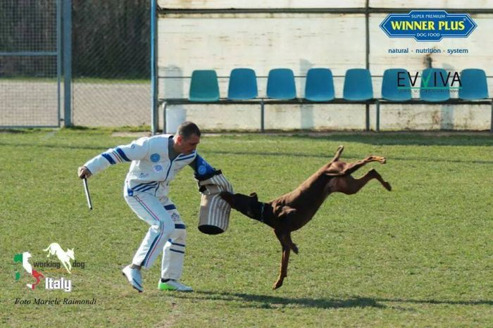 FEDERICO Paliano foto 7